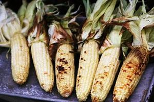 Alpine Farmers Market Roasted Corn