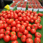 RSF-Farmers-Market-tomatoes