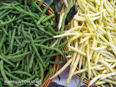 RSFFMGreen-and-Yellow-Beans